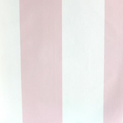 Carta da parati righe bianco e rosa